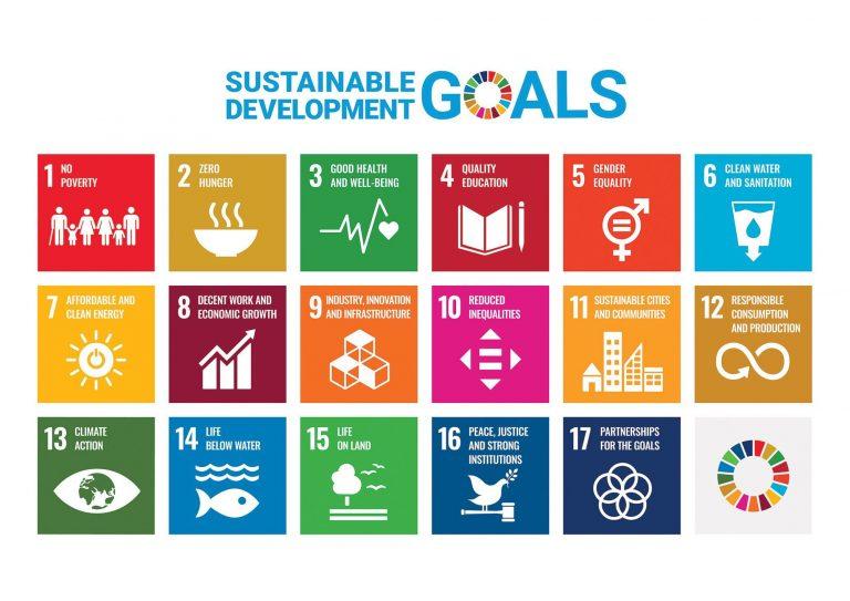 International Developmental Language Disorder Research Conference Web UN Goals